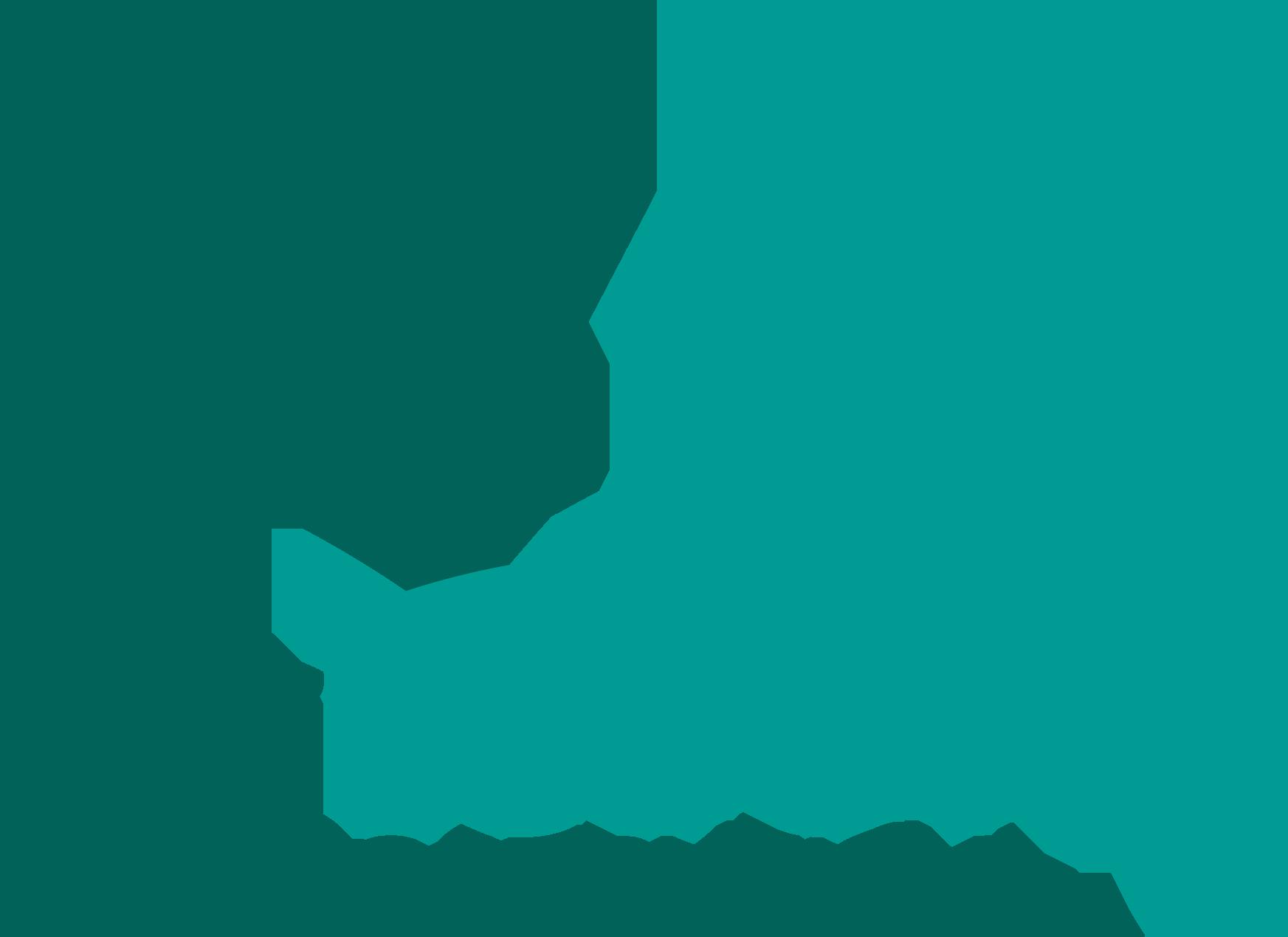 Lodovici Costruzioni